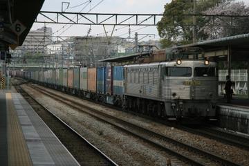 Pt8z9502
